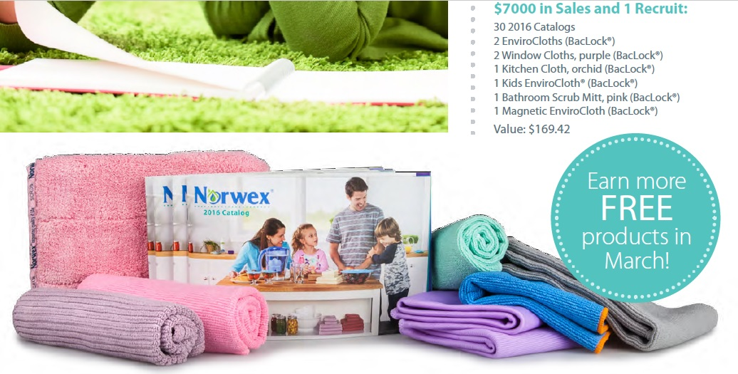 Sell your way to free Norwex
