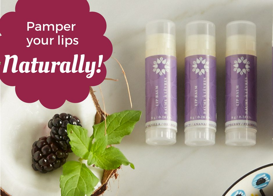 Norwex Lip Balm: Moisturizing relief for your lips